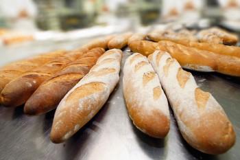 Ouverture estivale des pharmacies, boulangeries et boucheries de la Ville