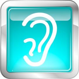 Le site Internet est désormais audio-accessible