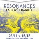 Exposition - Résonances, La Forêt habitée