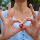 Réunion d'information sur la formation en langue des signes française