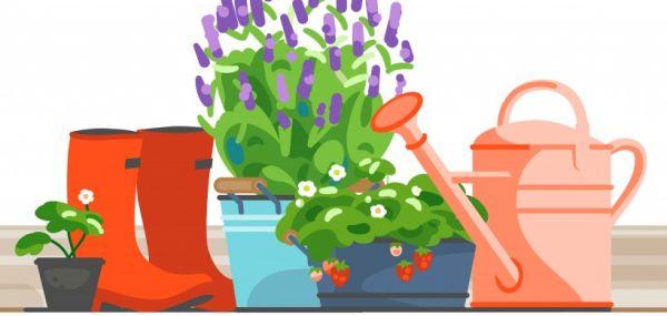 Concours balcons et jardins fleuris